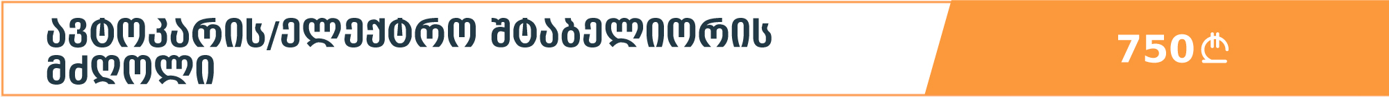 ავტოკარის/ელექტრო შტაბელიორის მძღოლი